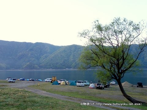 ▲「西湖自由キャンプ場」の湖畔サイト